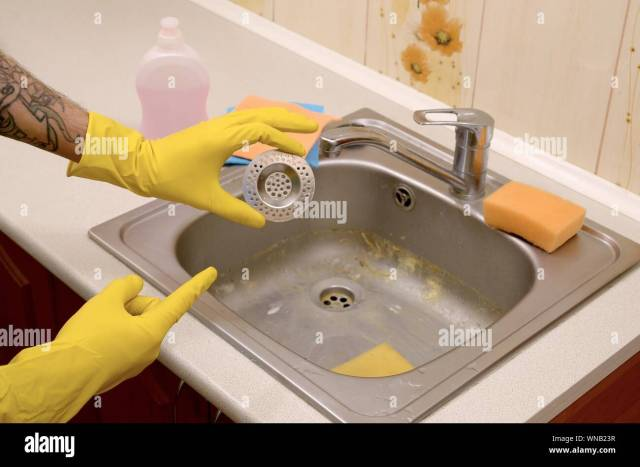 Cleaner in rubber gloves shows clean plughole protector of a