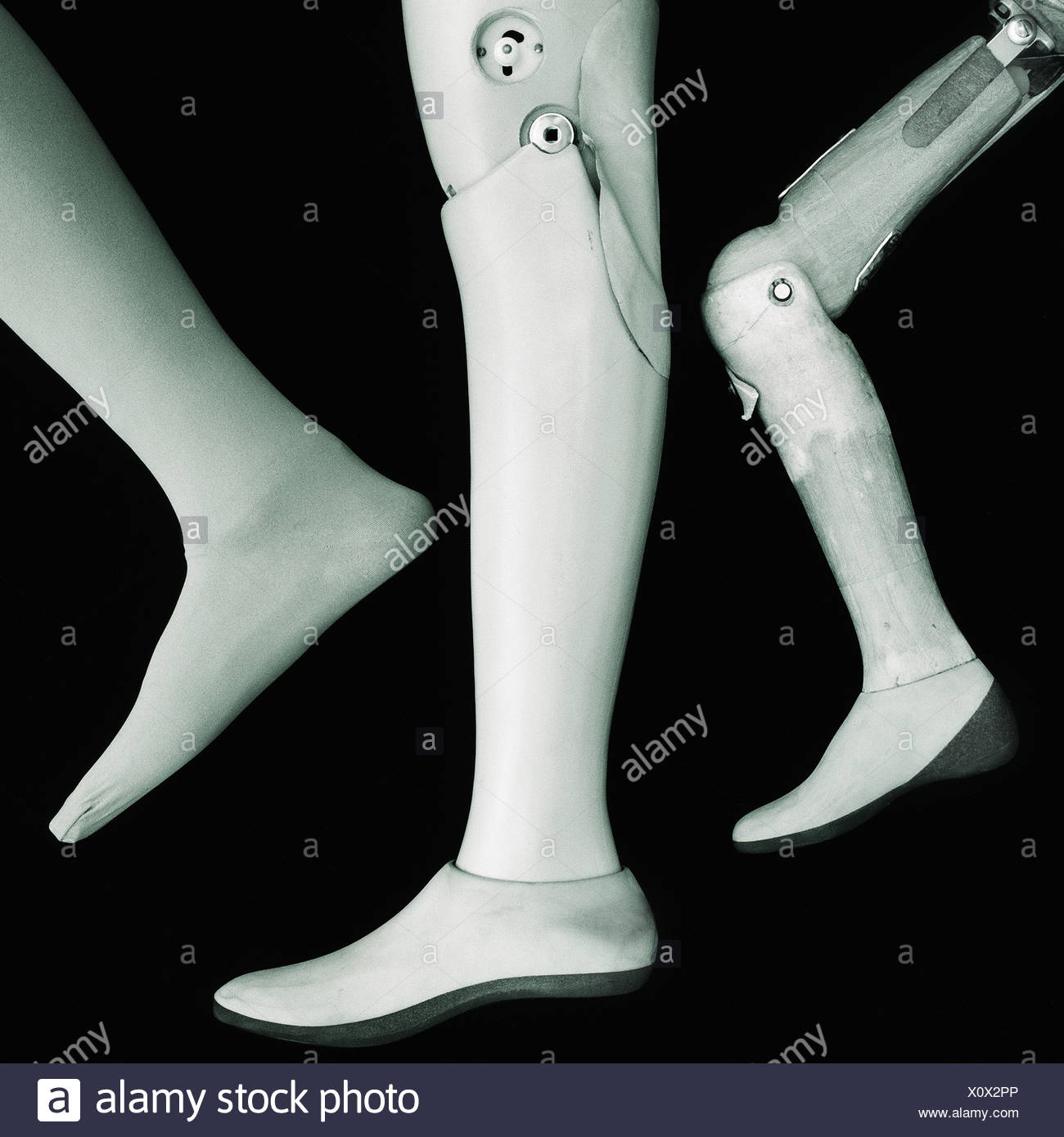 wooden leg stock photos
