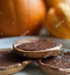 chocolate pumpkin pie tartlets stock image [ 870 x 1390 Pixel ]