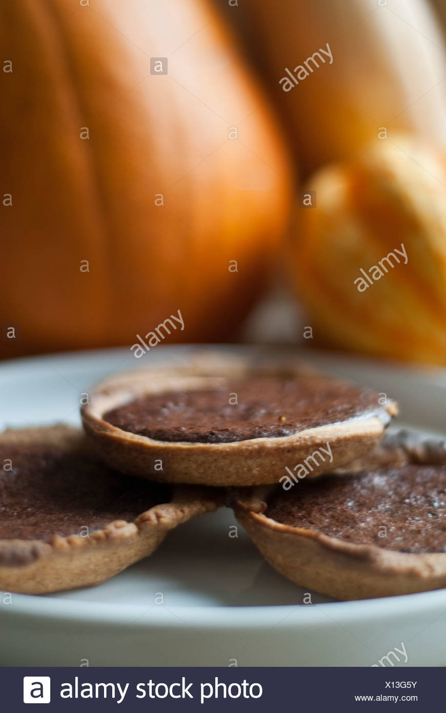 hight resolution of chocolate pumpkin pie tartlets stock image