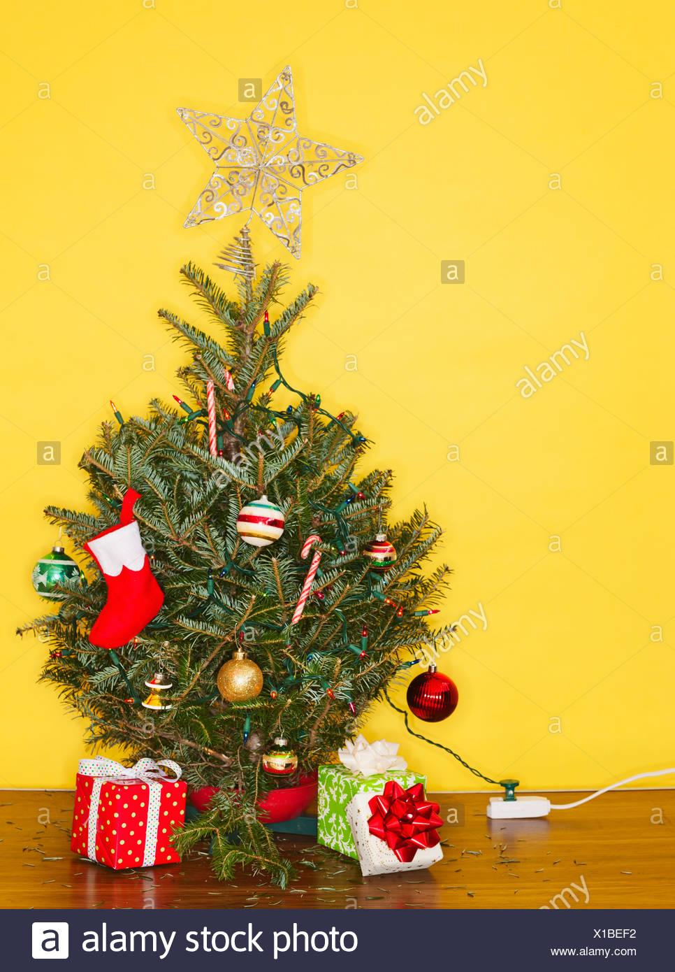 small christmas tree against