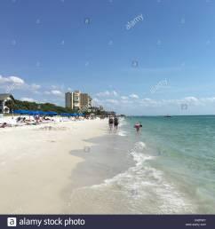 beach memories naples fl [ 1300 x 1390 Pixel ]