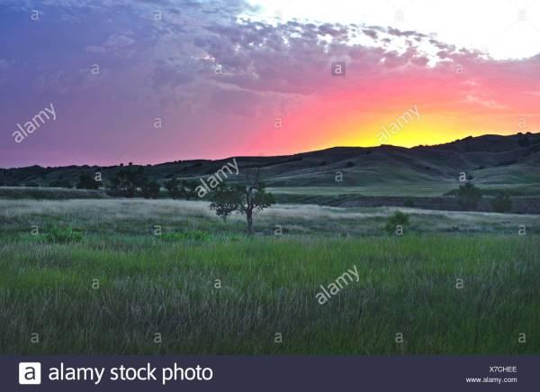 America Great Plains Lone Tree Sunset Landscape Grassland Badlands National Park