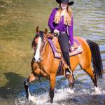 Arabian Horse Rider Bay Mare High Resolution Stock Photography And Images Alamy