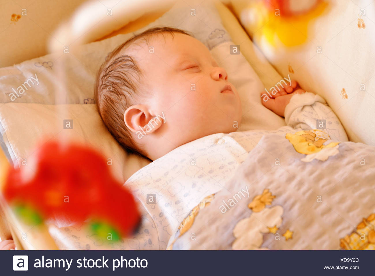 0 To 6 Months 0 6 Months Babies Baby Bed Beds Boy Boys Child Children Close Up Close Up Closed Eyes Close Stock Photo Alamy