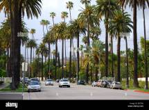 North Beverly Drive Hills Los Angeles