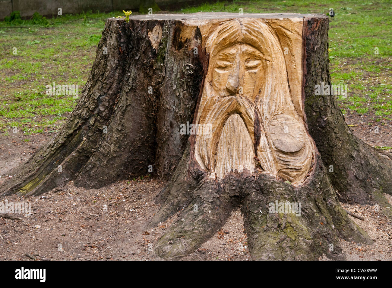 Butler Outdoor Teppich Carved Tree Stump Stockfotos And Carved Tree Stump Bilder
