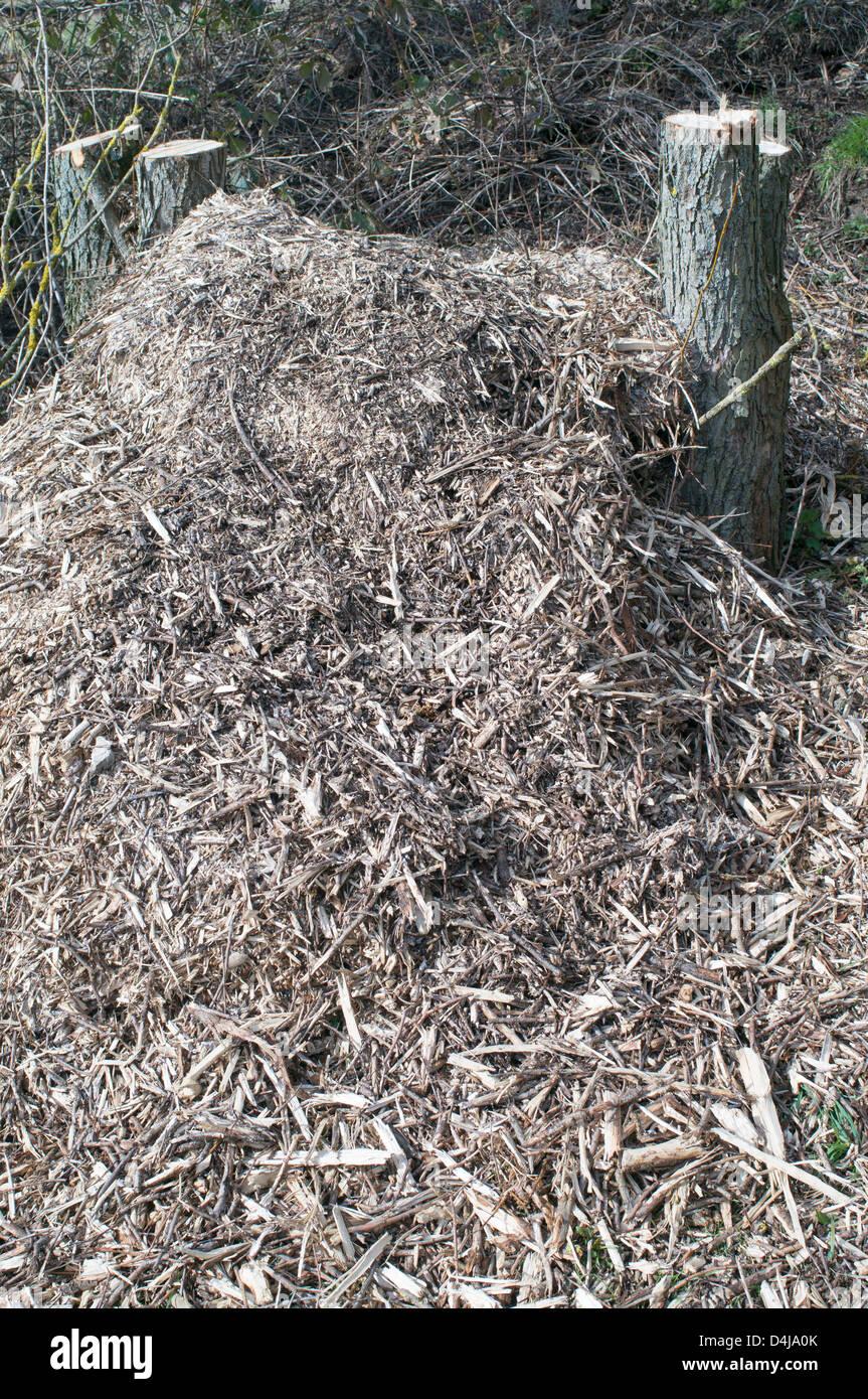 Holzhackschnitzel Garten Ob Bodendeckerpflanzen Rindenmulch Oder