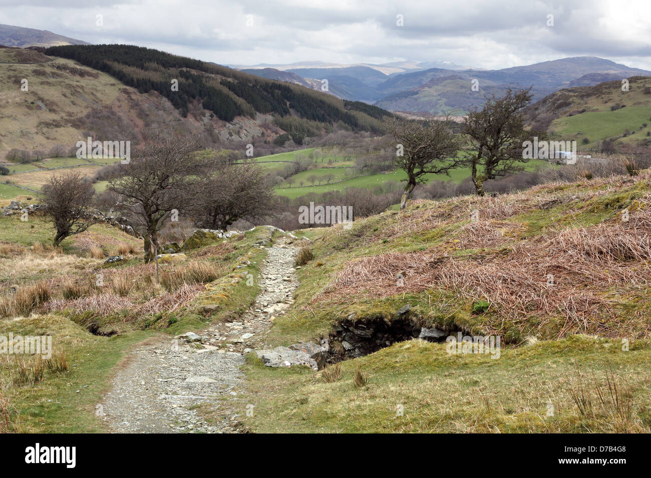 The route approaches the lake of llyn cau before. Der Pony Pfad Auf Cadair Idris In Snowdonia Nationalpark Gwynedd Wales April 2013 Stockfotografie Alamy
