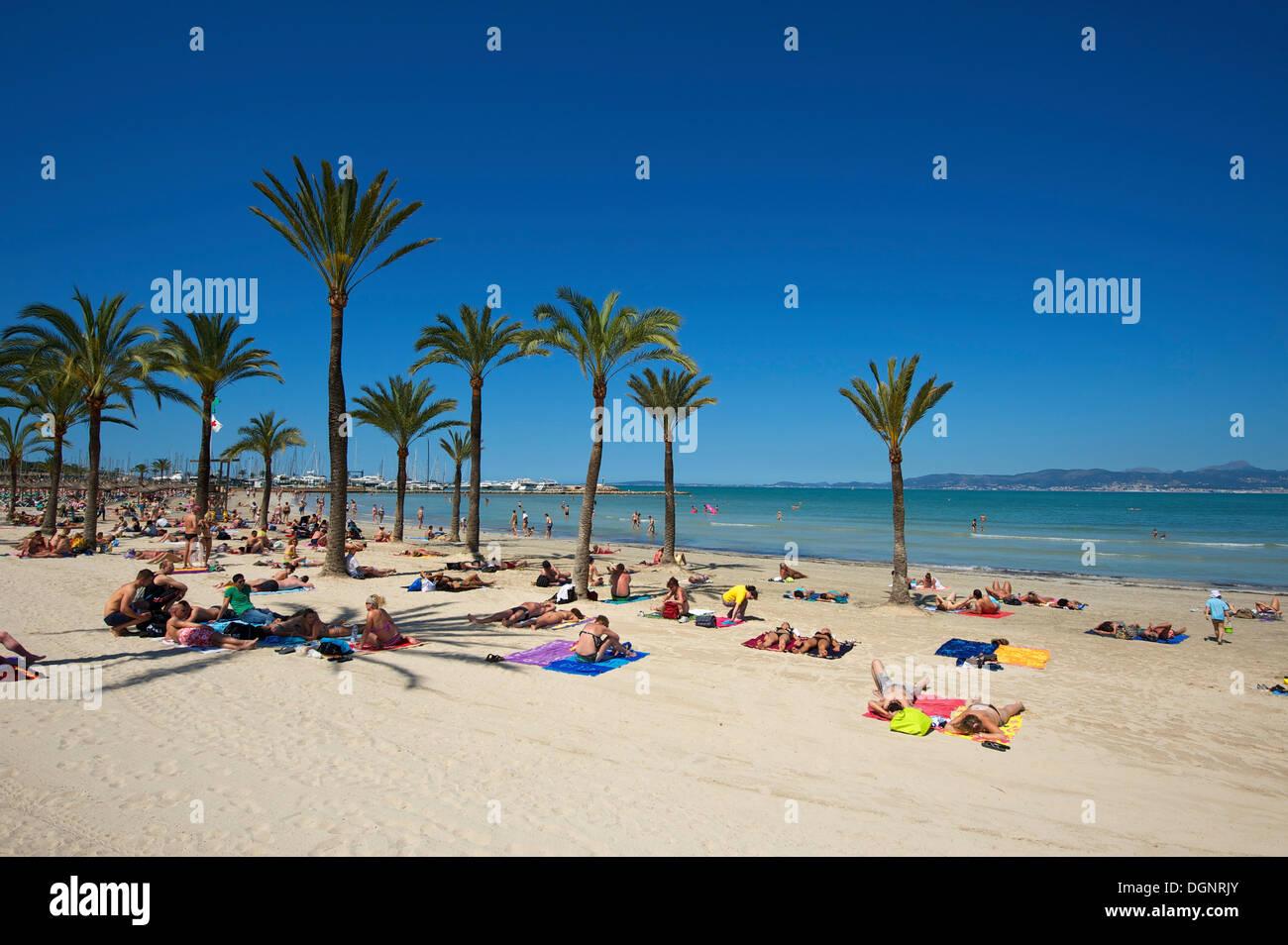 arenal beach mallorca stockfotos und