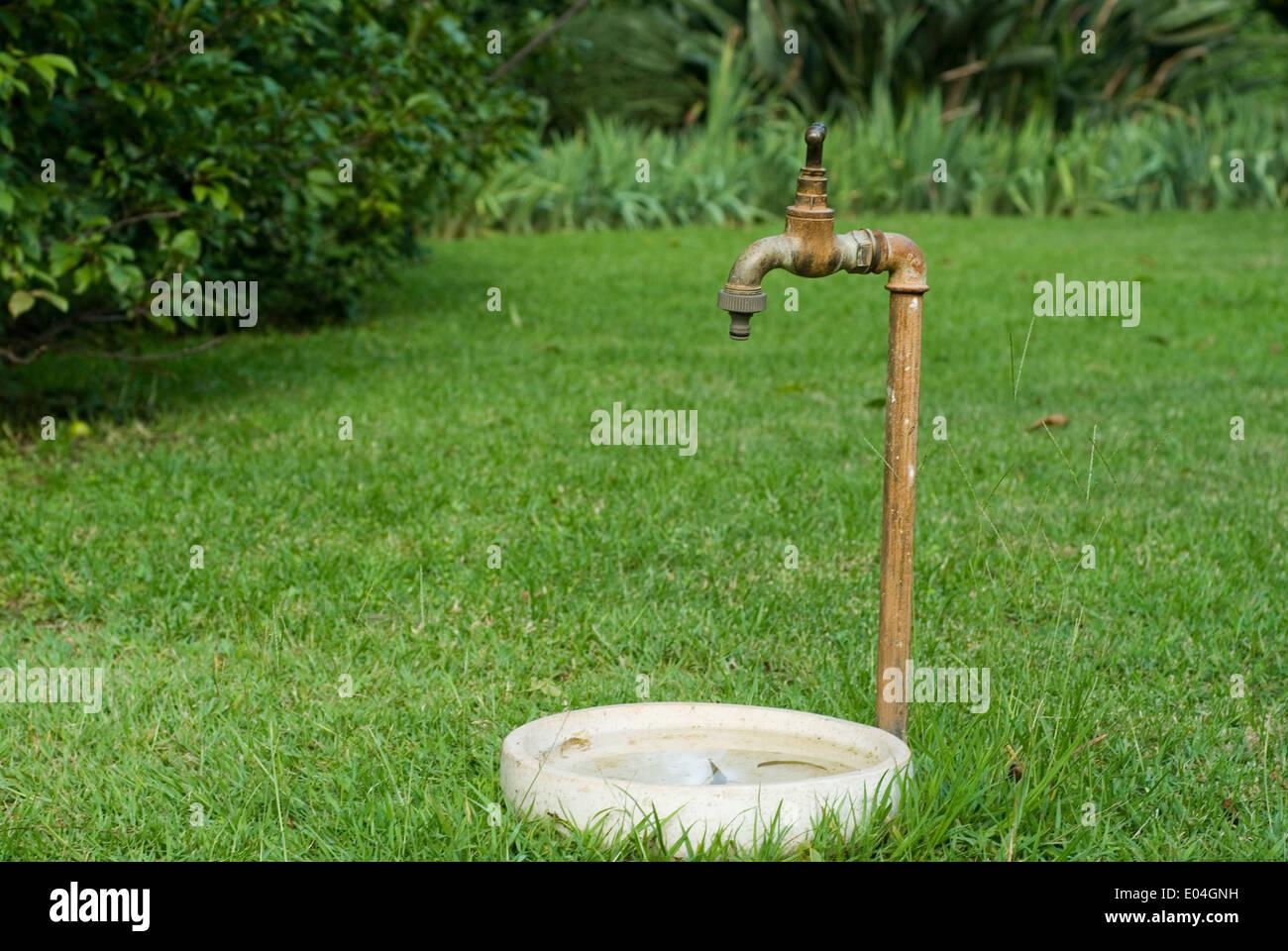 Wasserhahn Im Garten  mksurfclub