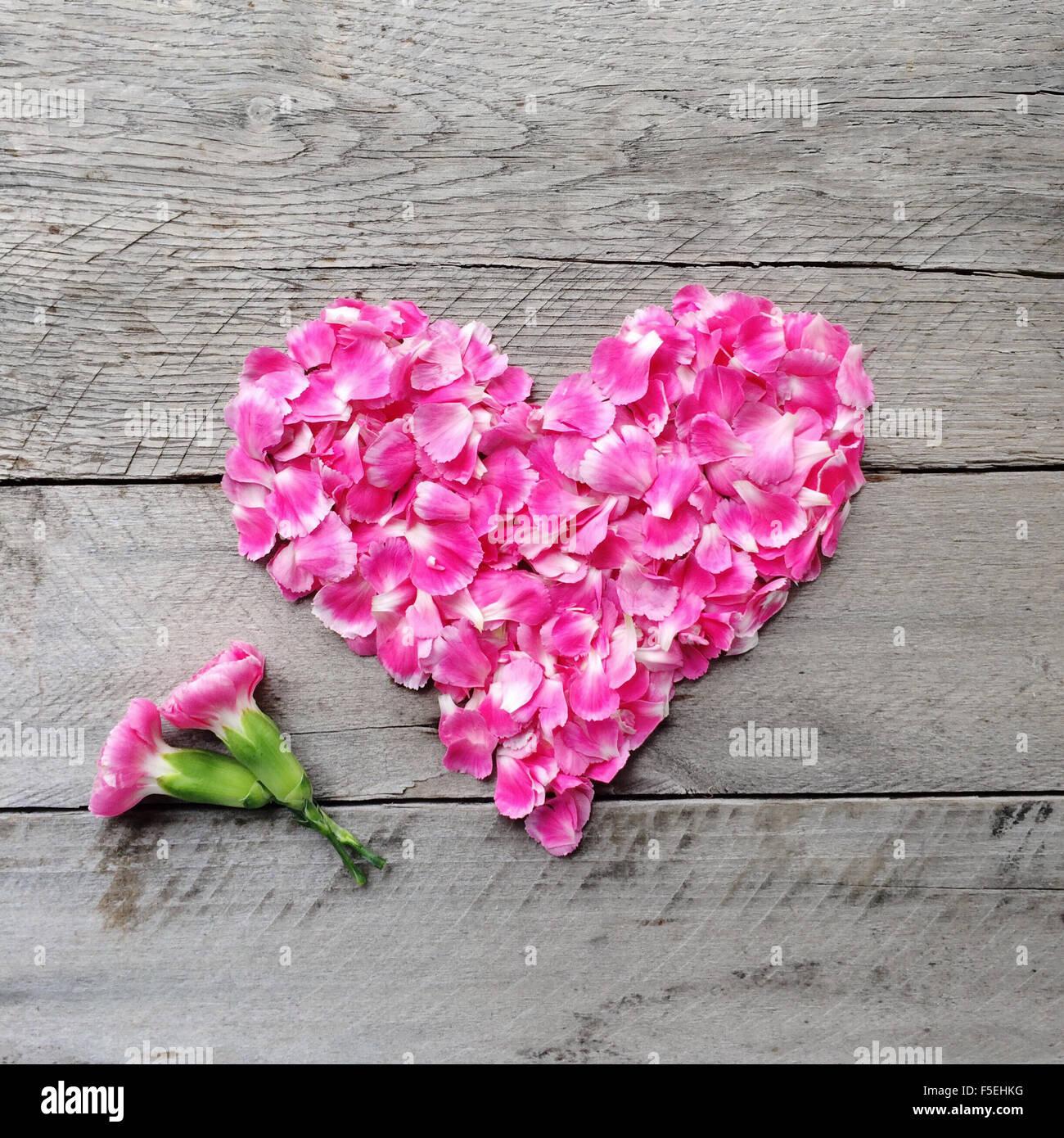 Rosa Blumen Herz hergestellt aus Nelken Stockfoto Bild 89446324  Alamy