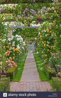 Rose Pergolas Stockfotos & Rose Pergolas Bilder - Alamy
