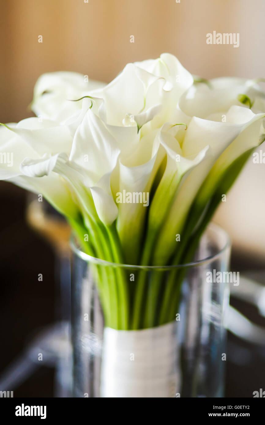 Brautstrau mit weien Callas in der vase Stockfoto Bild 103589110  Alamy