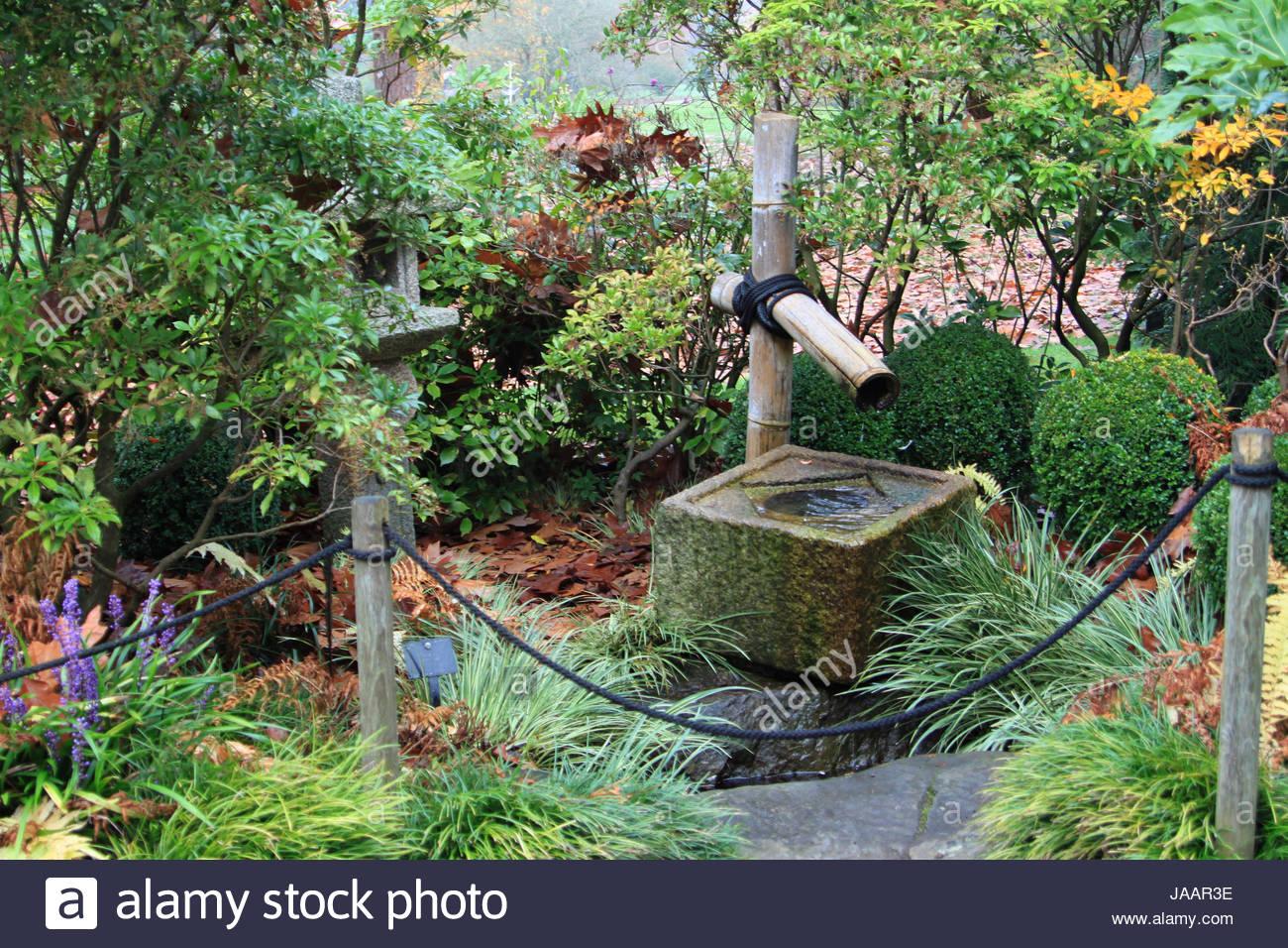 Japanischer Garten Pflanzen Kaufen Edo Keine Niwa Edo Garten