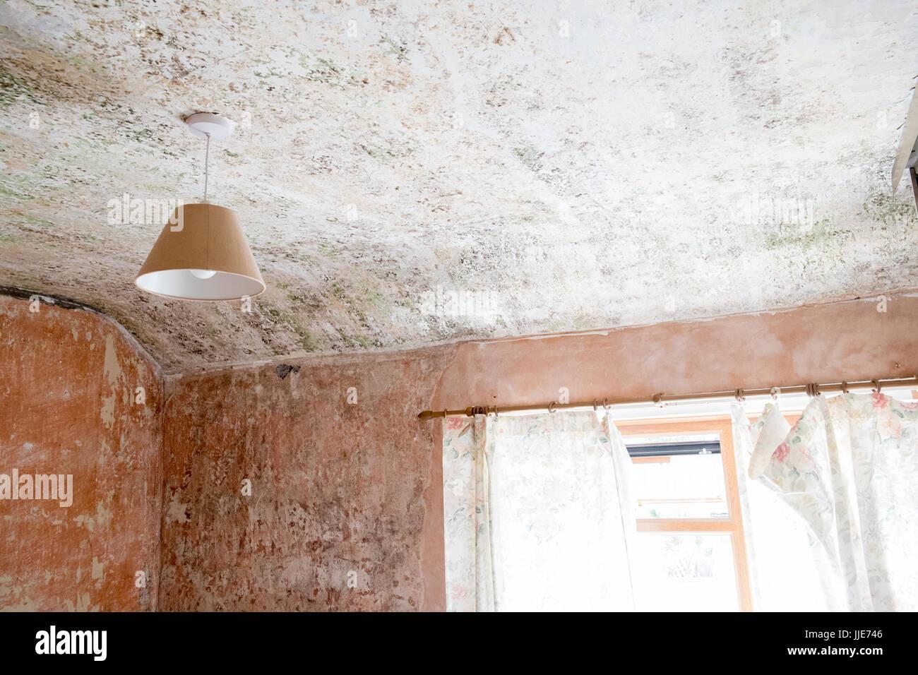 fliesen entfernen wand verputzen kellertreppe wand verputzen. Black Bedroom Furniture Sets. Home Design Ideas