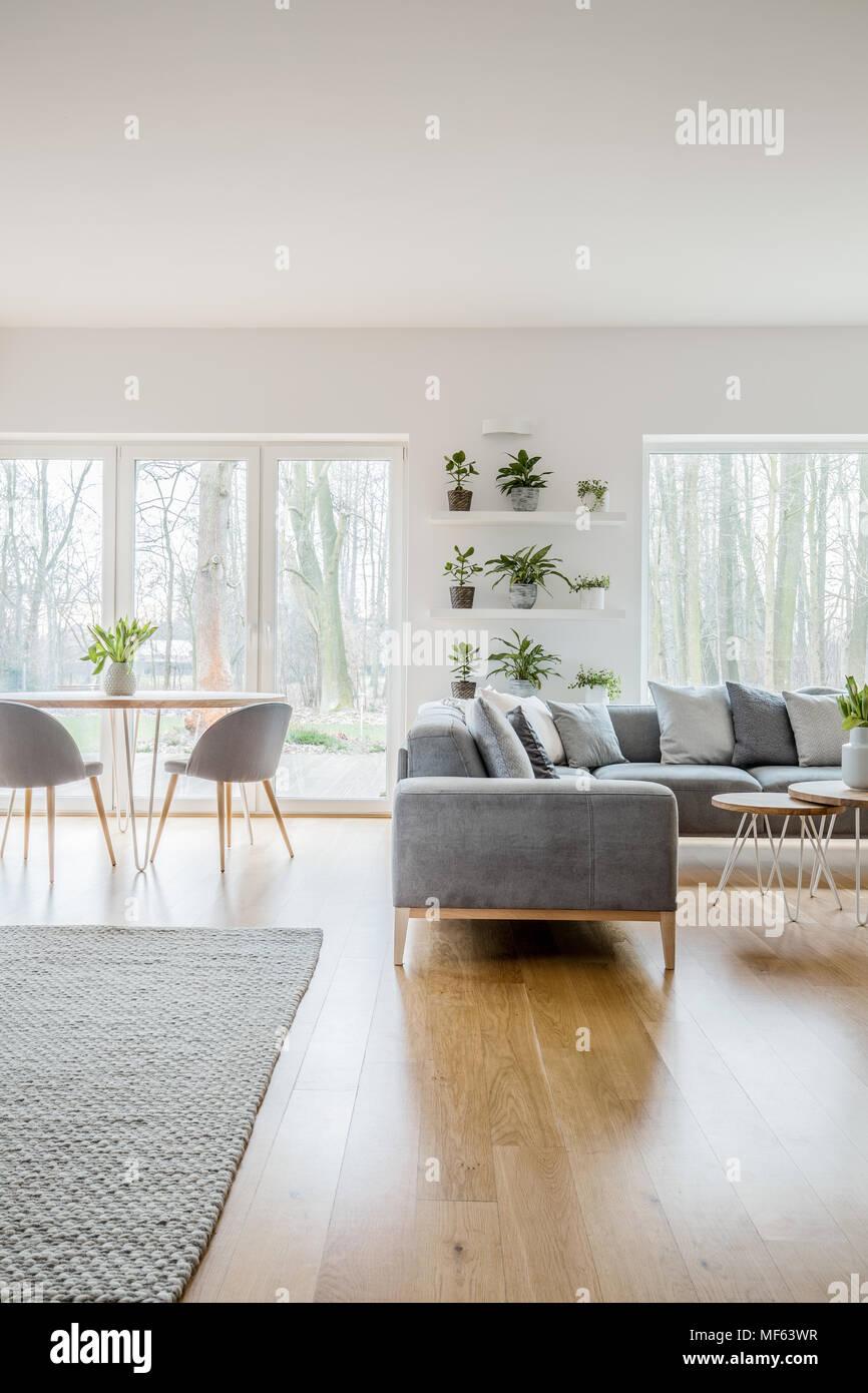 Einrichtungsideen Wohnzimmer Grauer Boden Dunkler Boden Einrichtung