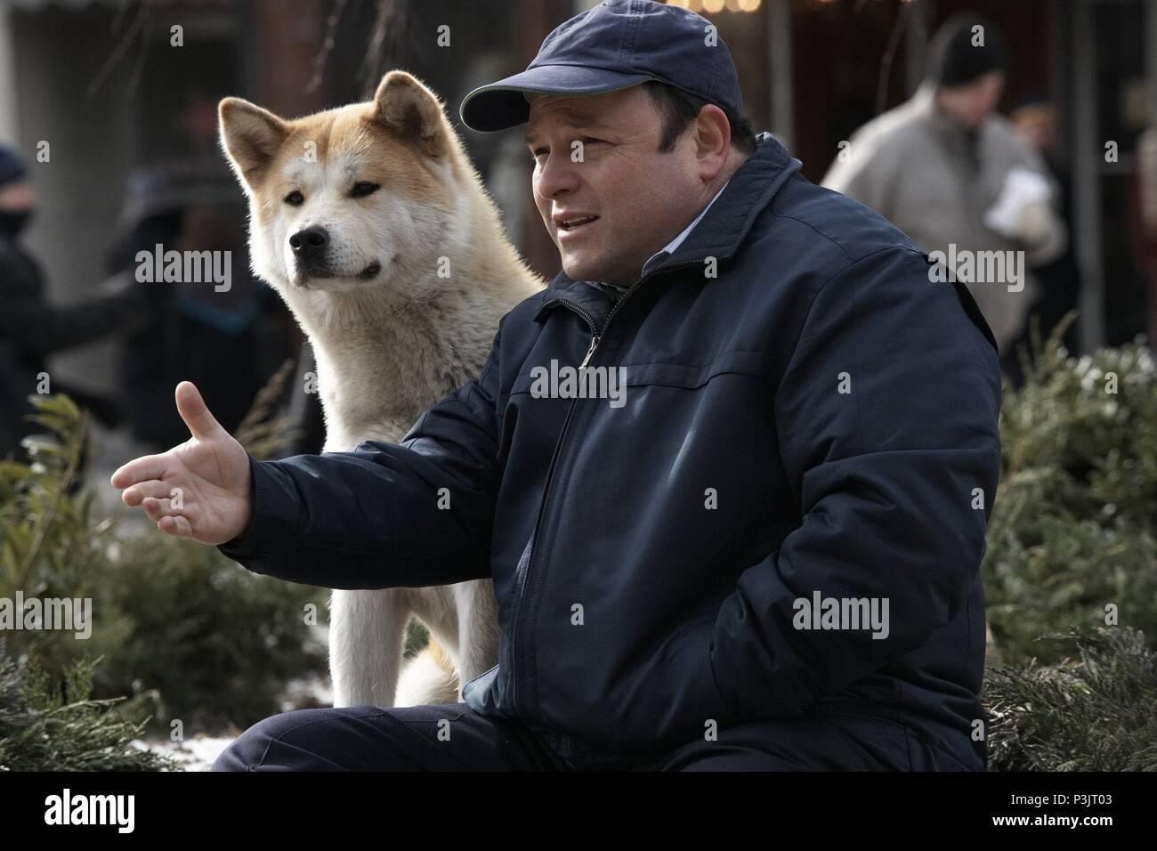 Original Film Titel Hachiko A Dog S Story Englischer