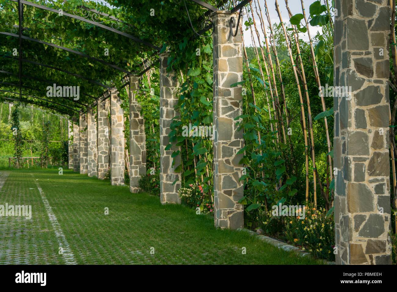 Pergola Garten Leco Design Pergola 2 8x2 8 Garten Terrasse überdachung