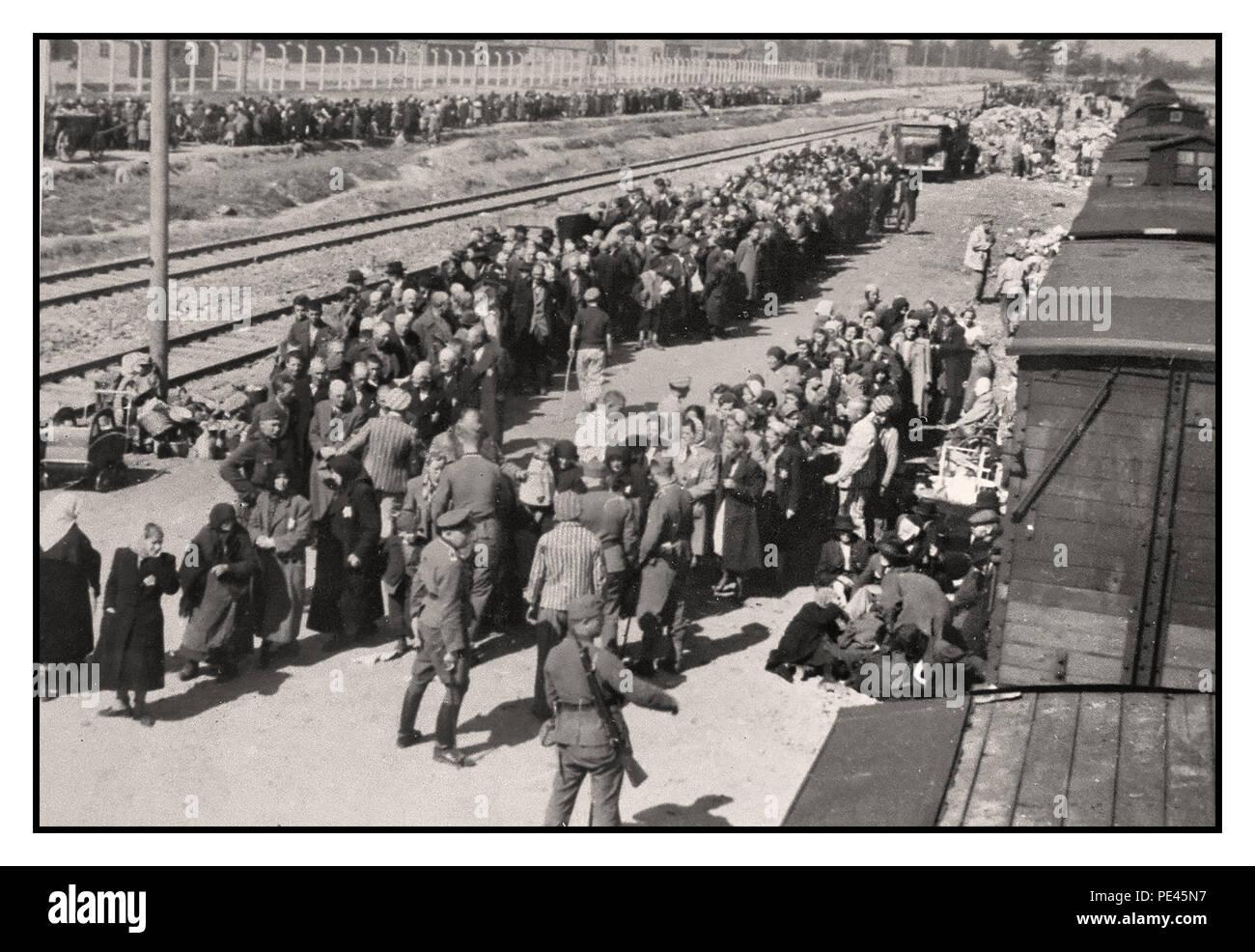 Auschwitz Prisoners Stockfotos Amp Auschwitz Prisoners Bilder