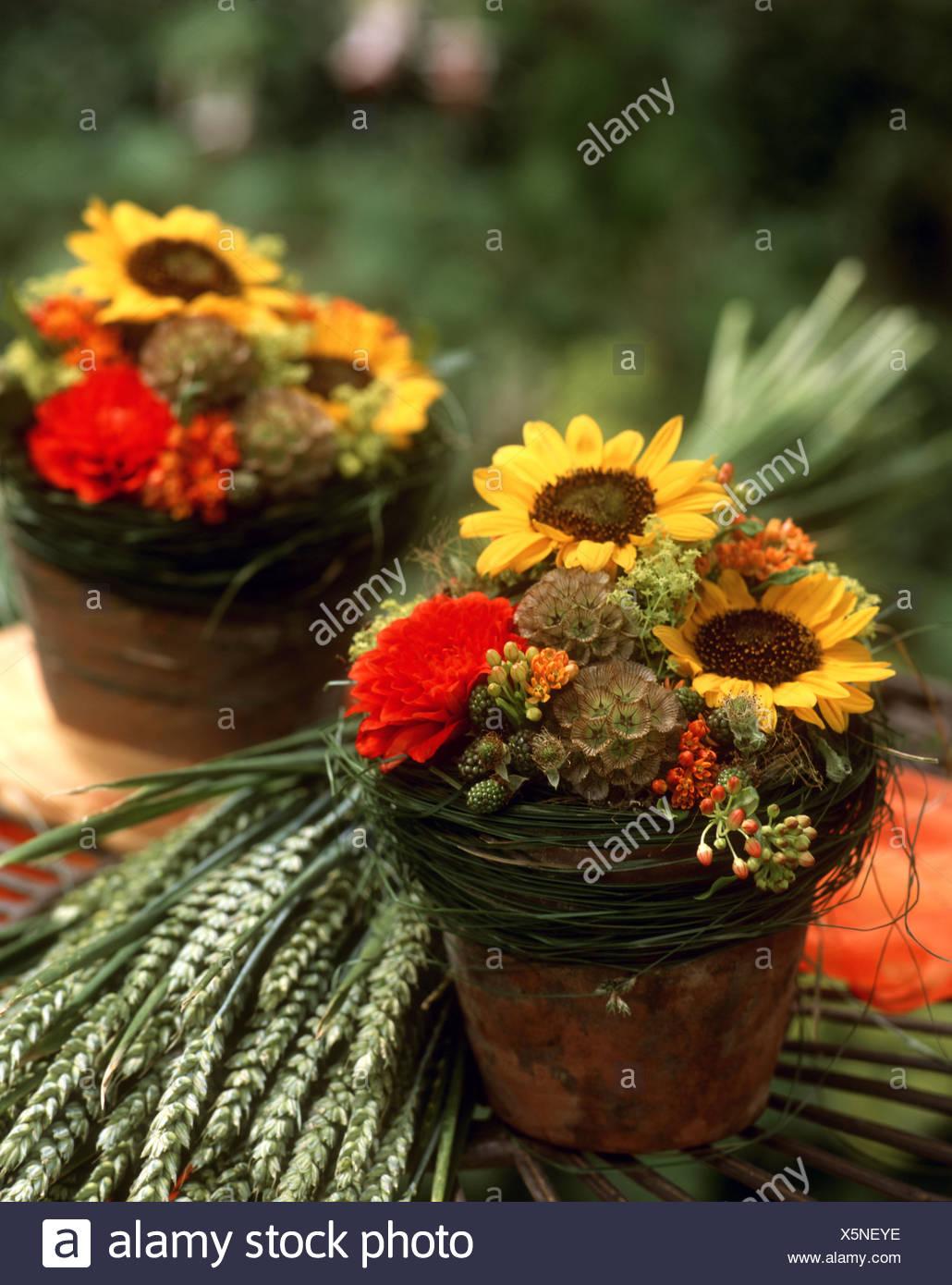 Tischdeko Sonnenblumen Sonnenblumen Deko 50 Wunderschone