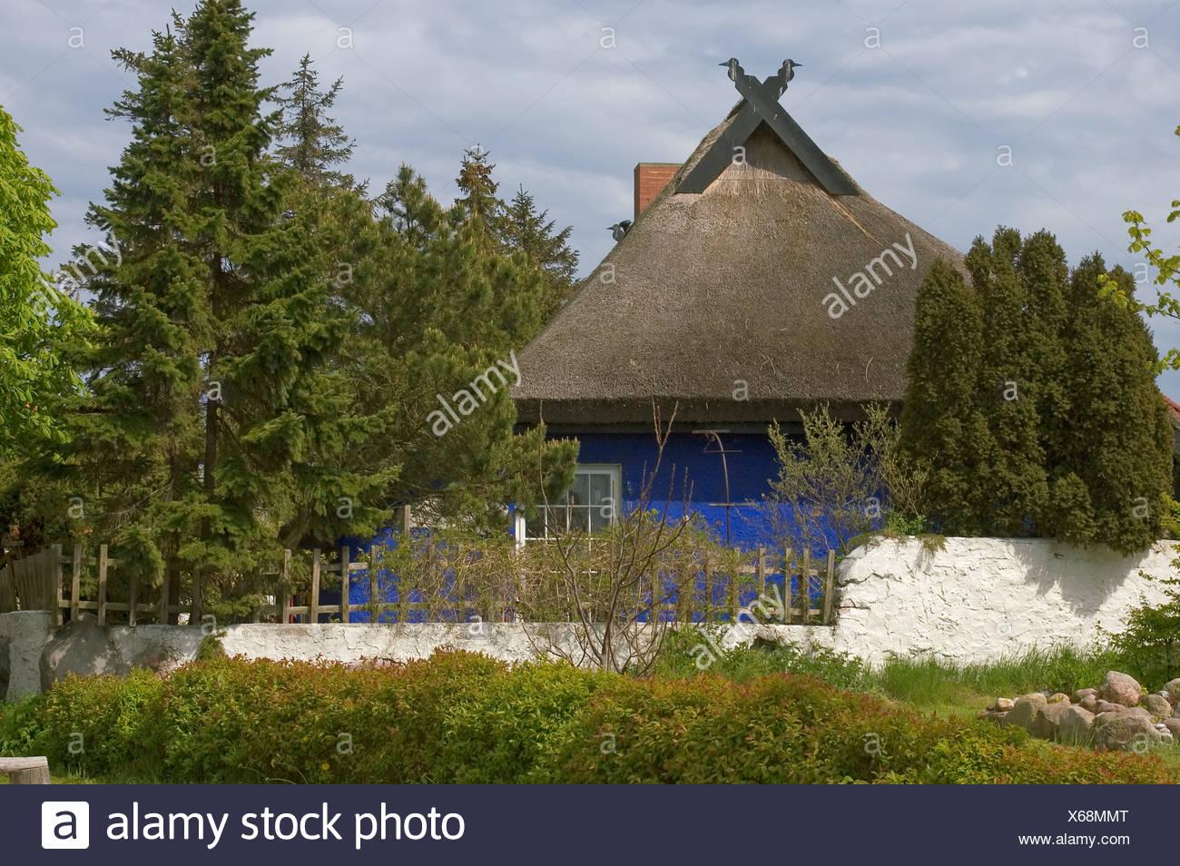 Haus Mit Scheune Mecklenburg Vorpommern Dhh Mit Grosser