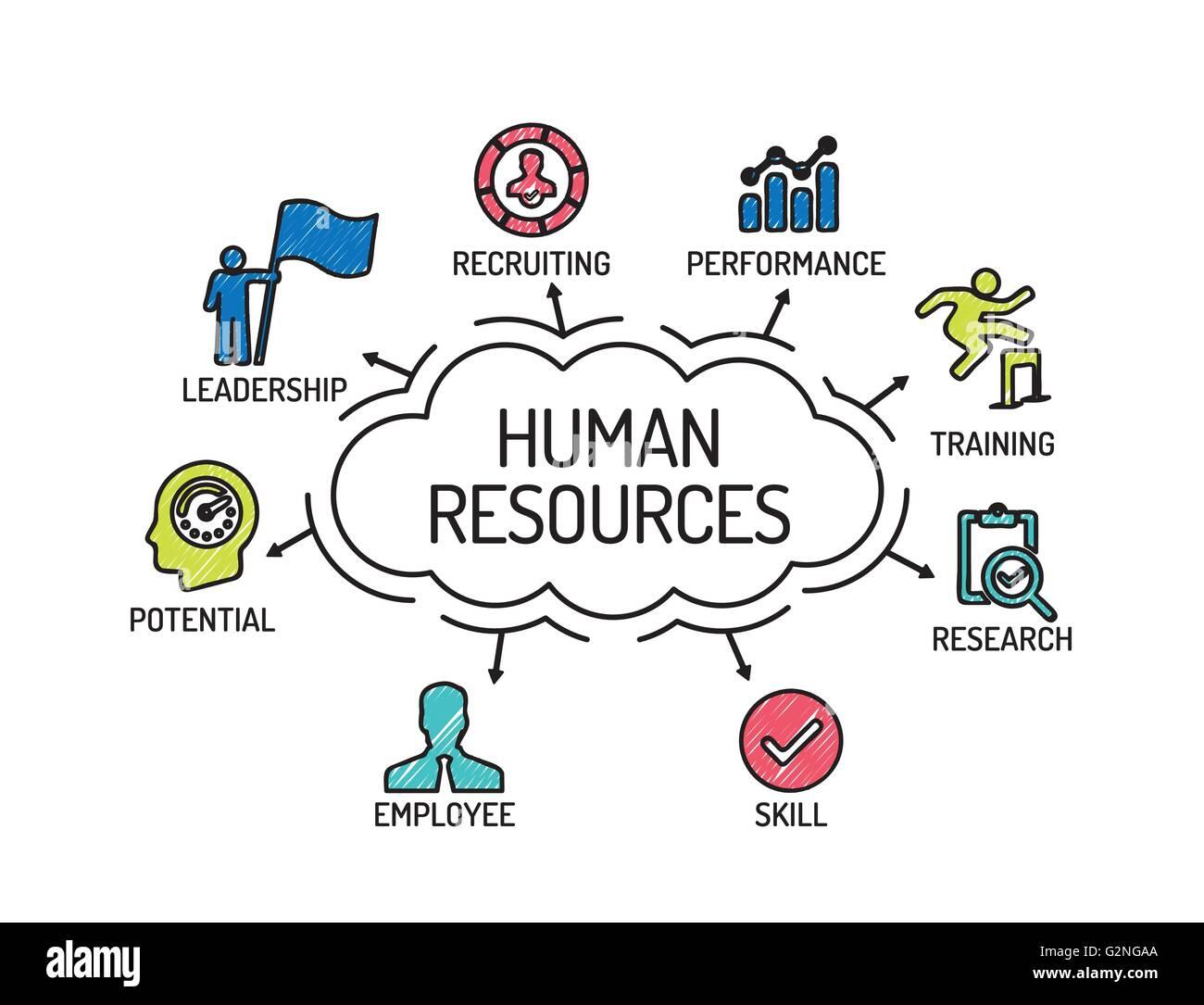 Los Recursos Humanos Grafico Con Iconos Y Palabras Clave