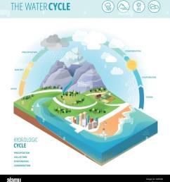 diagrama que muestra el ciclo del agua la recolecci n de precipitaci n evaporaci n y condensaci n [ 1234 x 1390 Pixel ]