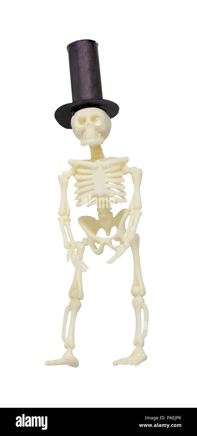 medium resolution of esqueleto formal vistiendo un sombrero negro ruta incluida imagen de stock
