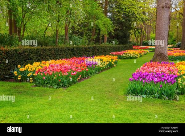 hermoso paisaje primaveral impresionante