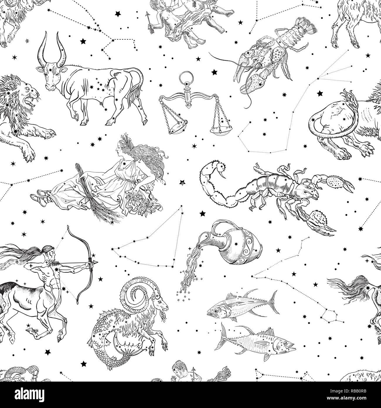 Los Signos Del Zodíaco Y Las Constelaciones Patrón Sin Fisuras
