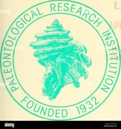 boletines de la paleontolog a americana uiotins de fsmcrican yakon towqs  [ 1300 x 1390 Pixel ]