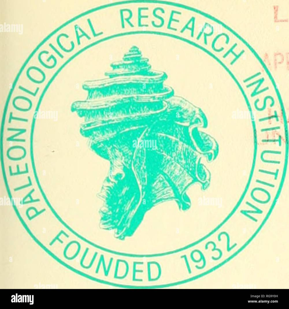 medium resolution of boletines de la paleontolog a americana uiotins de fsmcrican yakon towqs