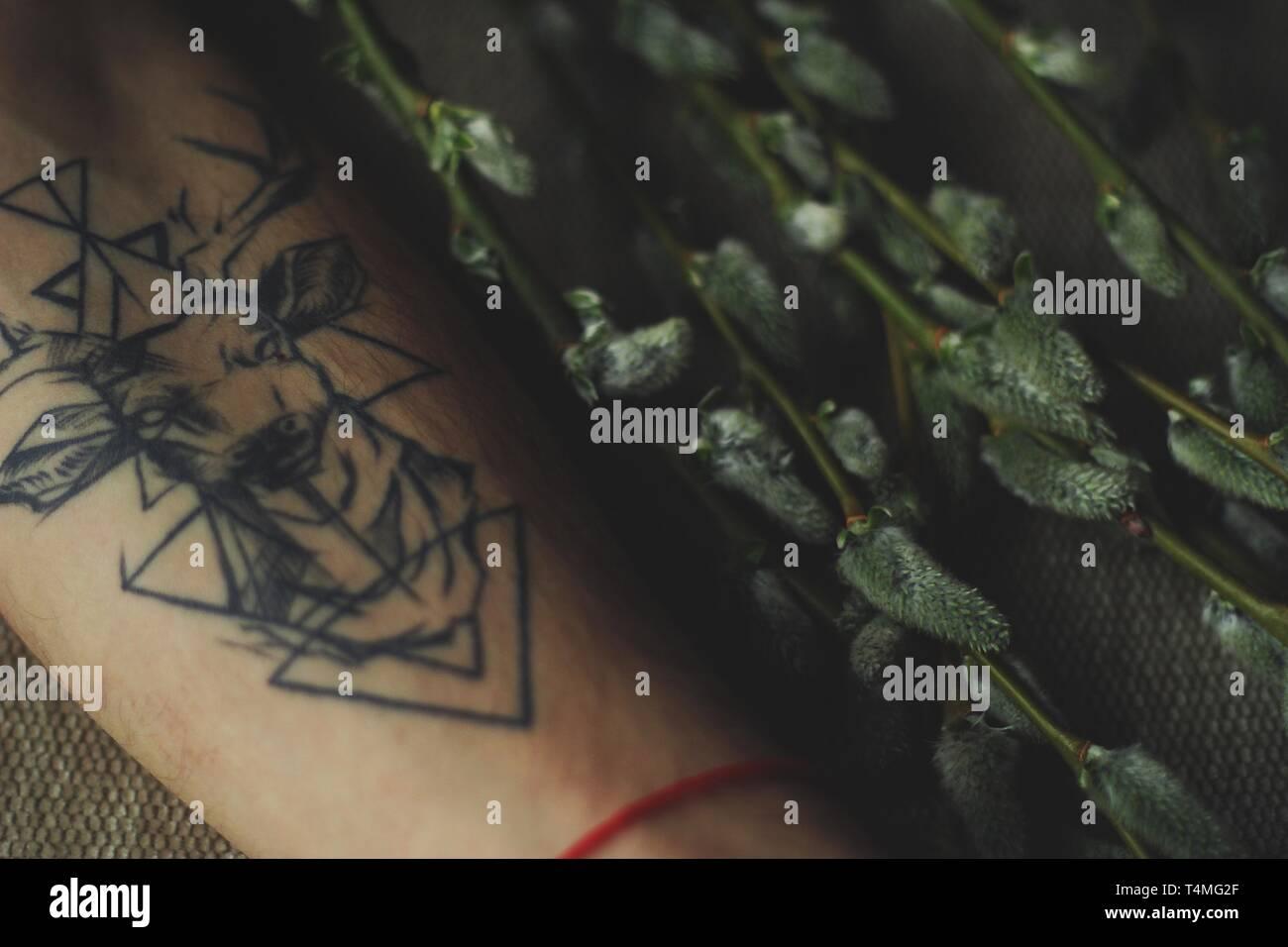 Tattoo On Forearm Imágenes De Stock Tattoo On Forearm Fotos De
