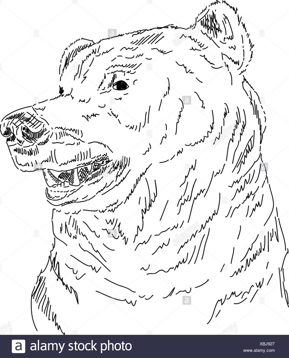 Imagenes De Dibujos Animados Para Dibujar A Color