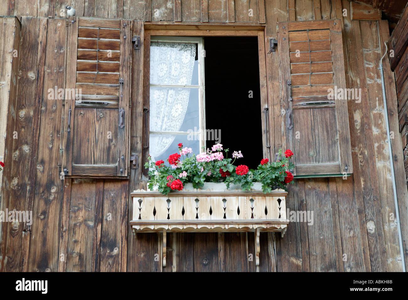 chalet en bois de style alpin traditionnel avec des rideaux de dentelle et fleurs a leysin vieille ville en valais en suisse europe photo stock alamy