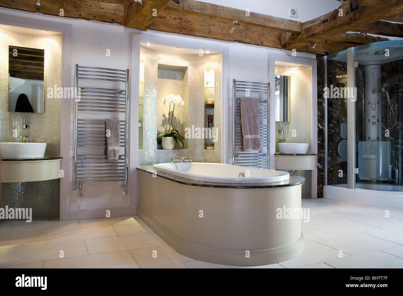 https www alamyimages fr photo image dans les bassins d alcoves eclaire dans grande salle de bains moderne avec baignoire s etendant au prix 28205395 html