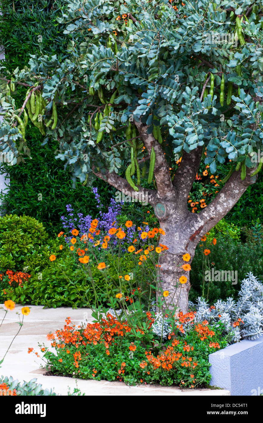 Jardin Mediterraneen Contemporain Jardin Sec Mediterraneen Et