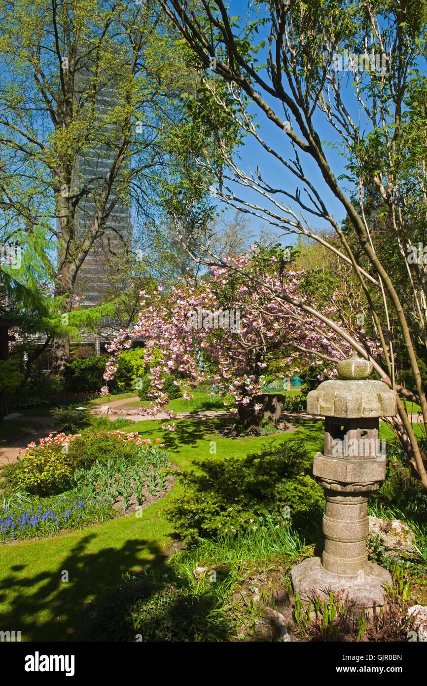 Asiatischer Garten Nrw