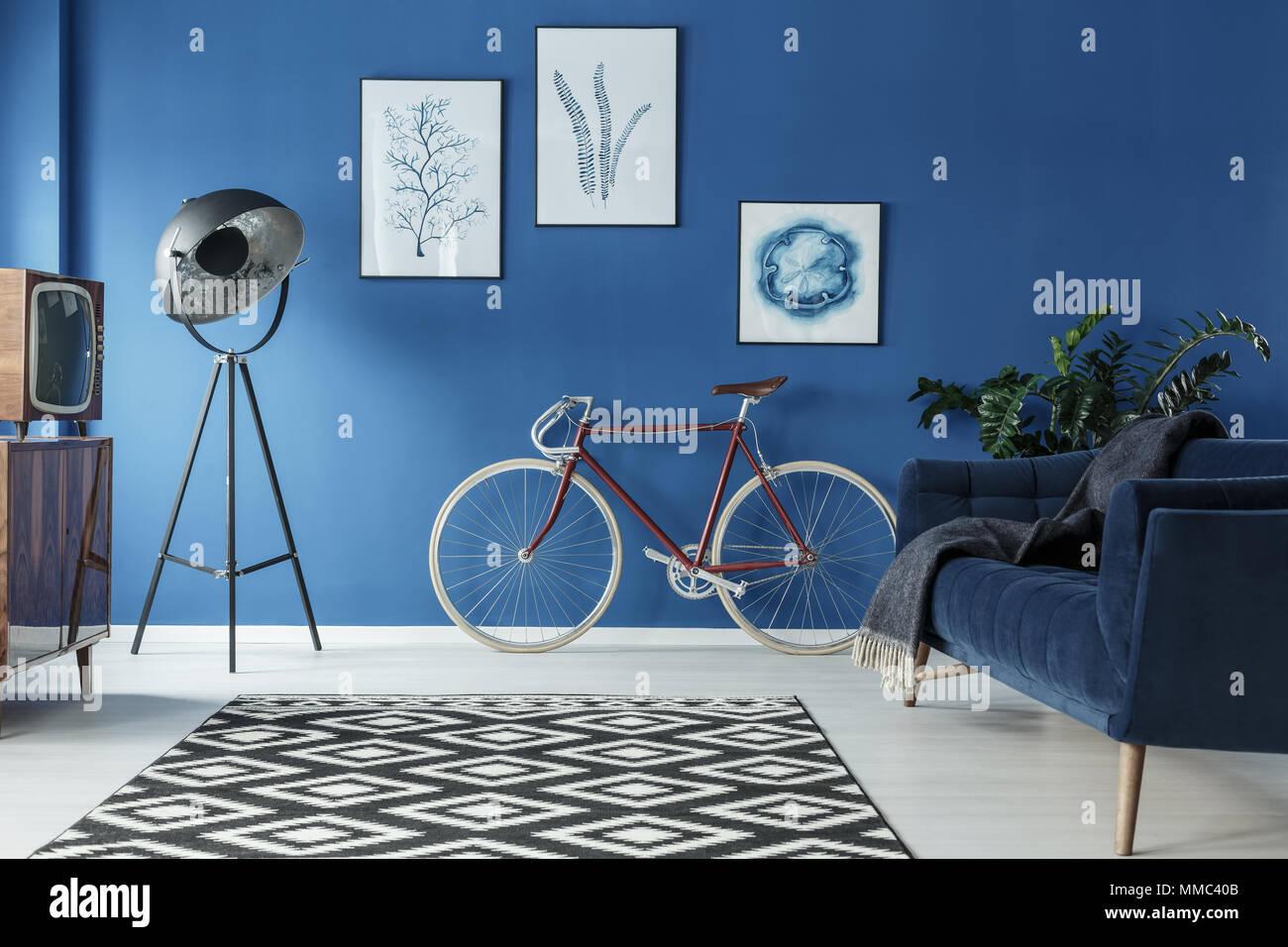 https www alamyimages fr tapis a motifs noir et blanc dans un salon bleu image184663371 html
