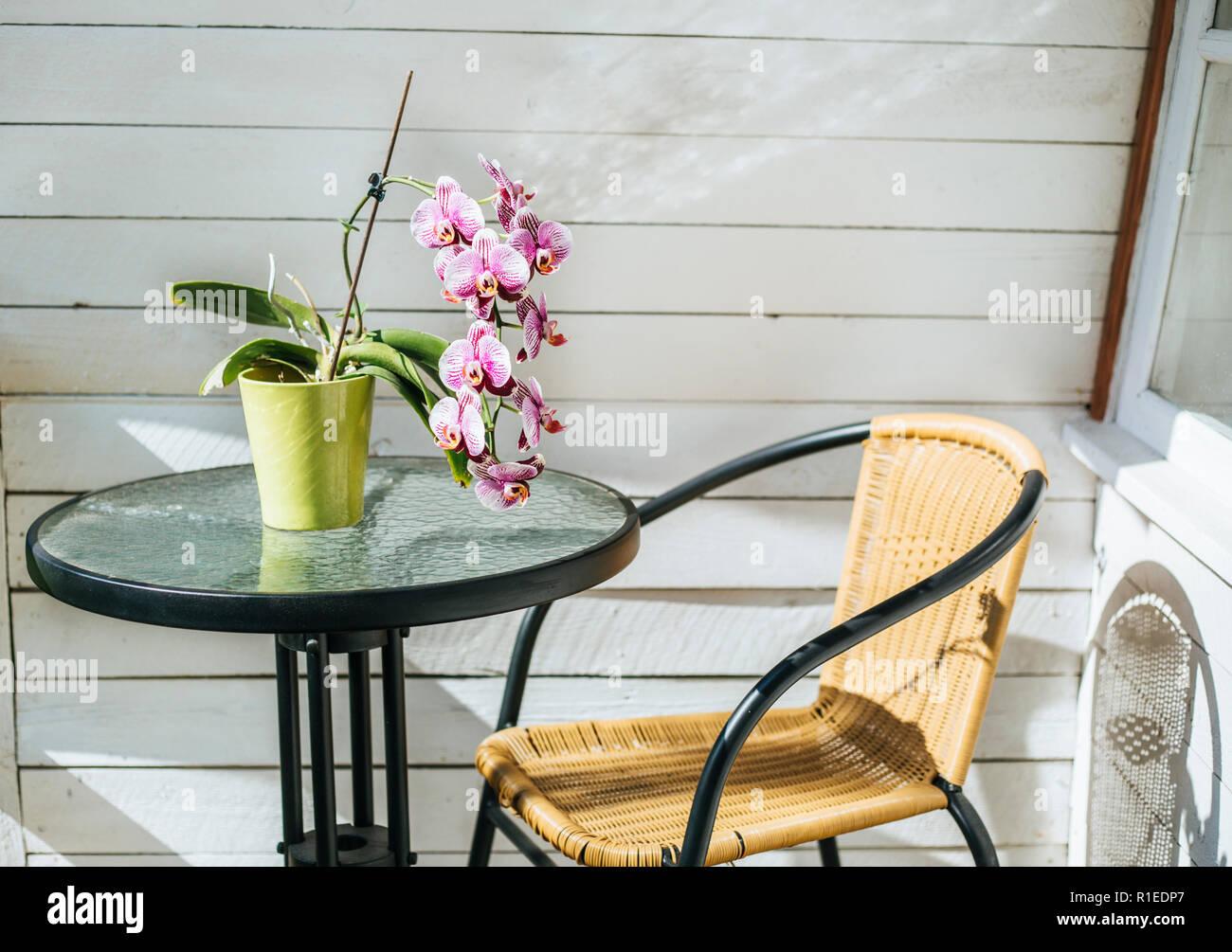 Table Exterieur Vert