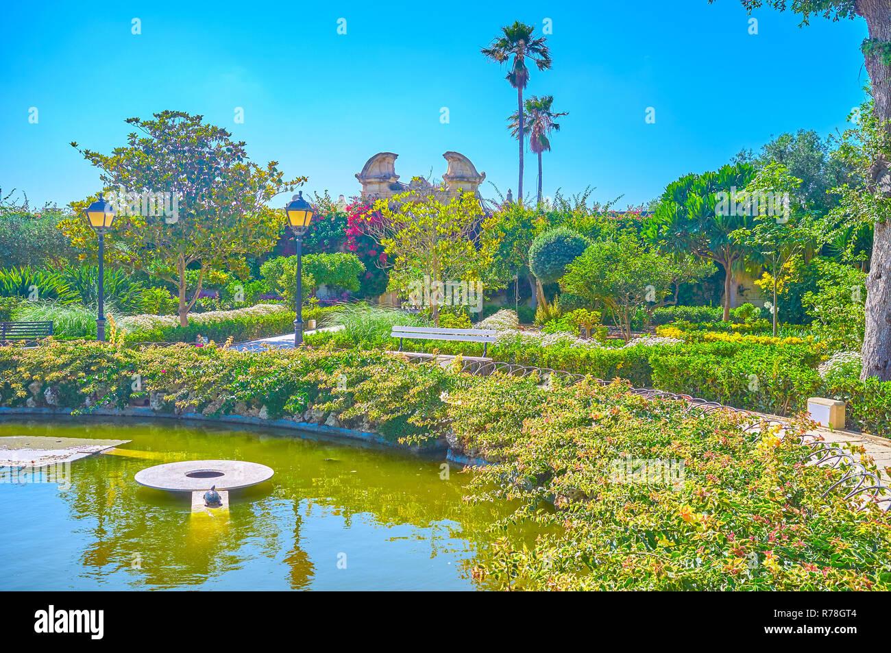 Stunning Bassin De Jardin Tortue Photos - House Design - marcomilone.com