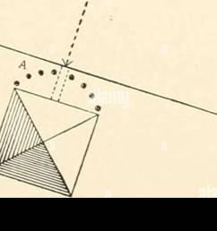 bulletin du minist re de l agriculture des tats unis l agriculture diagramme illustrant la diffusion par red spider  [ 1300 x 619 Pixel ]