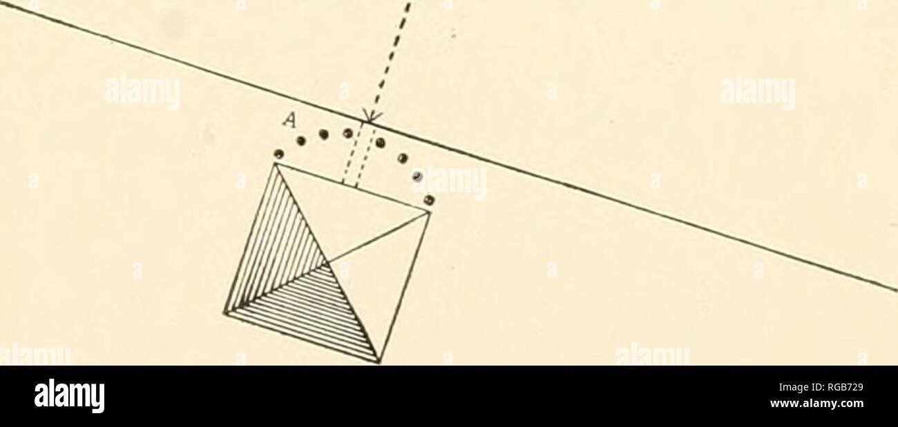 hight resolution of  bulletin du minist re de l agriculture des tats unis l agriculture diagramme illustrant la diffusion par red spider