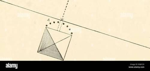 small resolution of  bulletin du minist re de l agriculture des tats unis l agriculture diagramme illustrant la diffusion par red spider