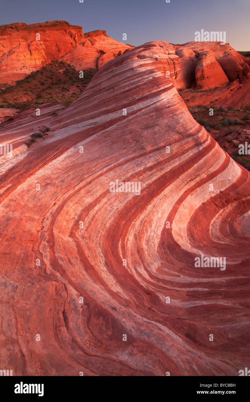 Desert Immagini  Desert Fotos Stock  Alamy