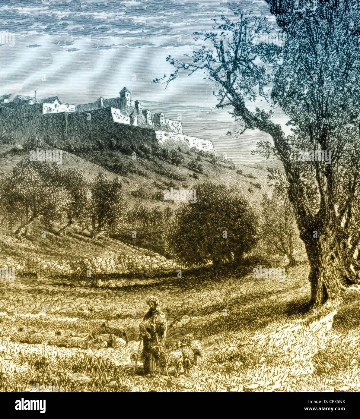 Paesaggio di Betlemme West Bank lautonomia palestinese area incisione storica del XIX secolo