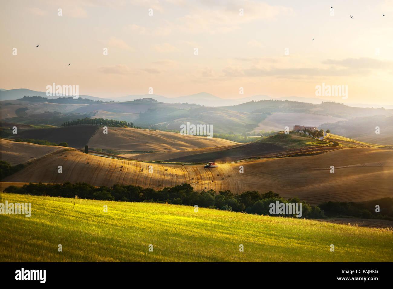 LItalia Toscana terreni coltivati e colline estate