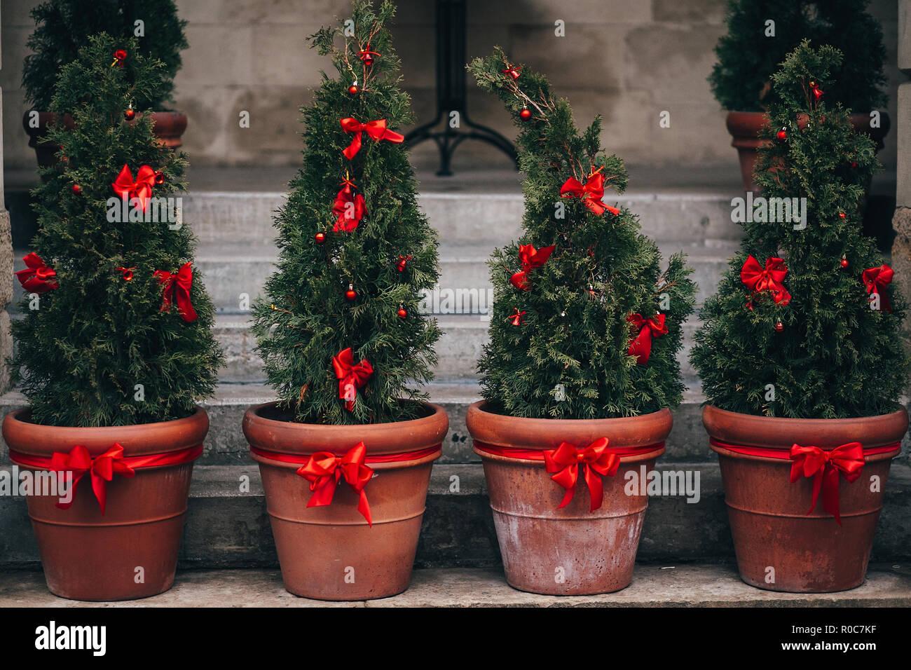 Elegante strada di Natale decorazioni verde rami di abete