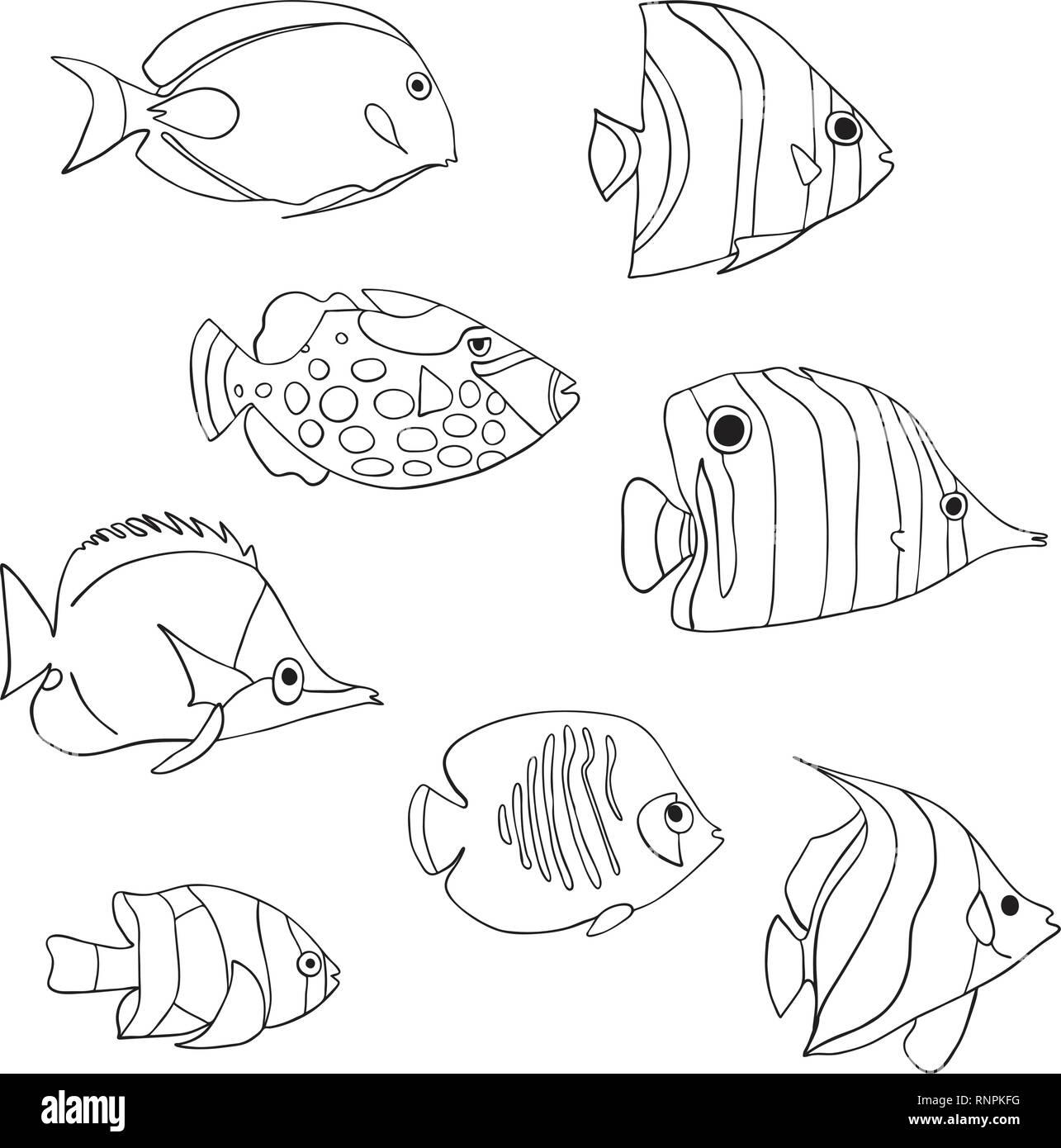 Pesce Tropicale Icon Set Il Vettore Isolato Caratteri
